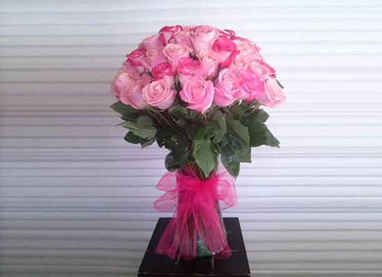Carmen Flor y Plantas