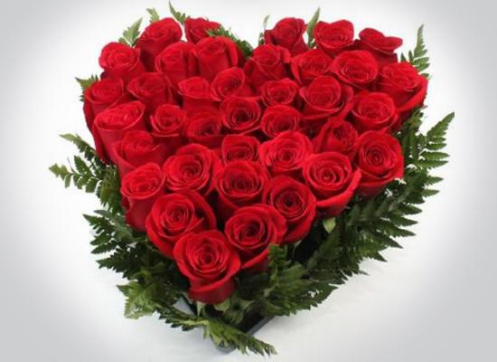 123 Flores